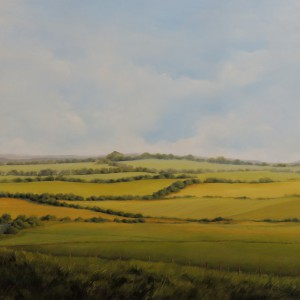 FIELDS IN EAST SUSSEX 36X36