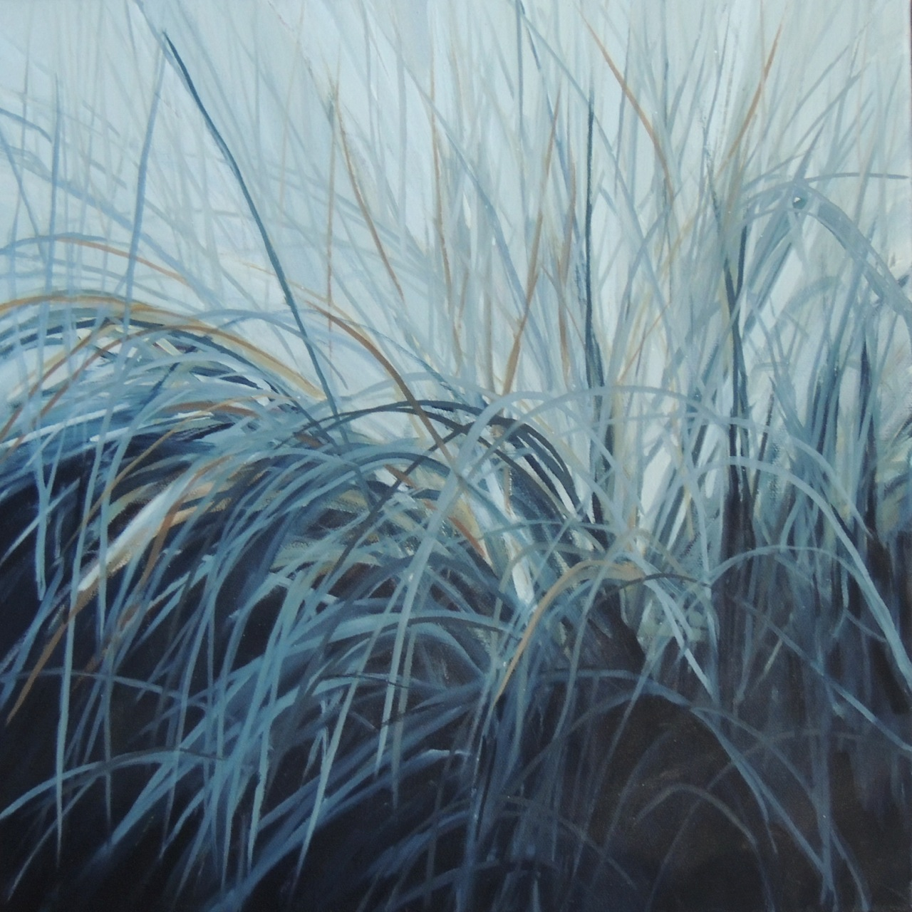 GRASSES 16X16 OIL ON CANVAS