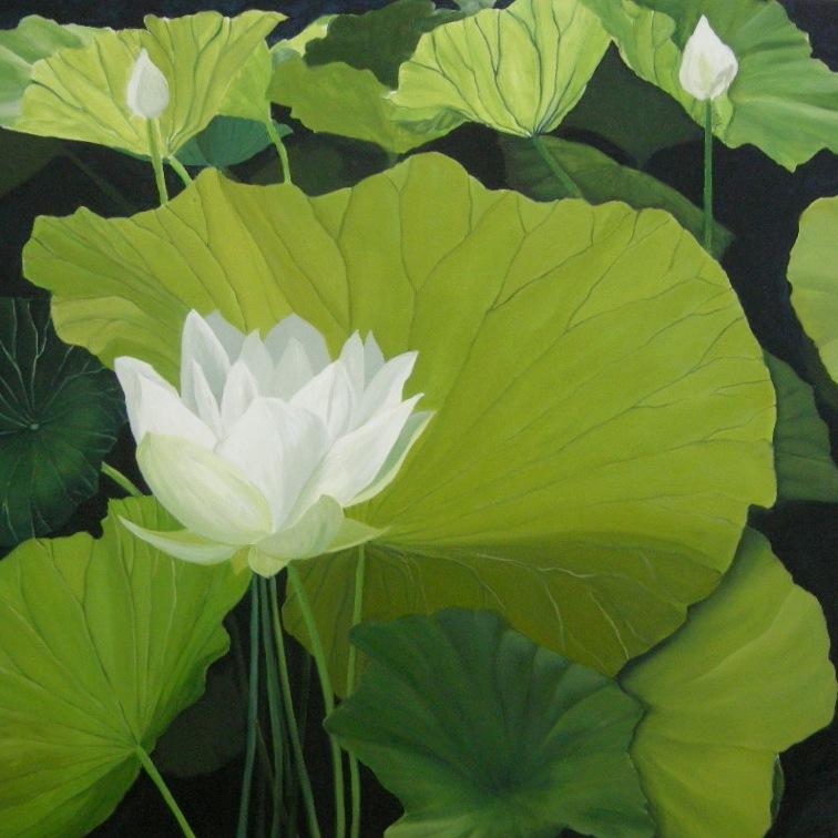 LOTUS FLOWERS 30X30