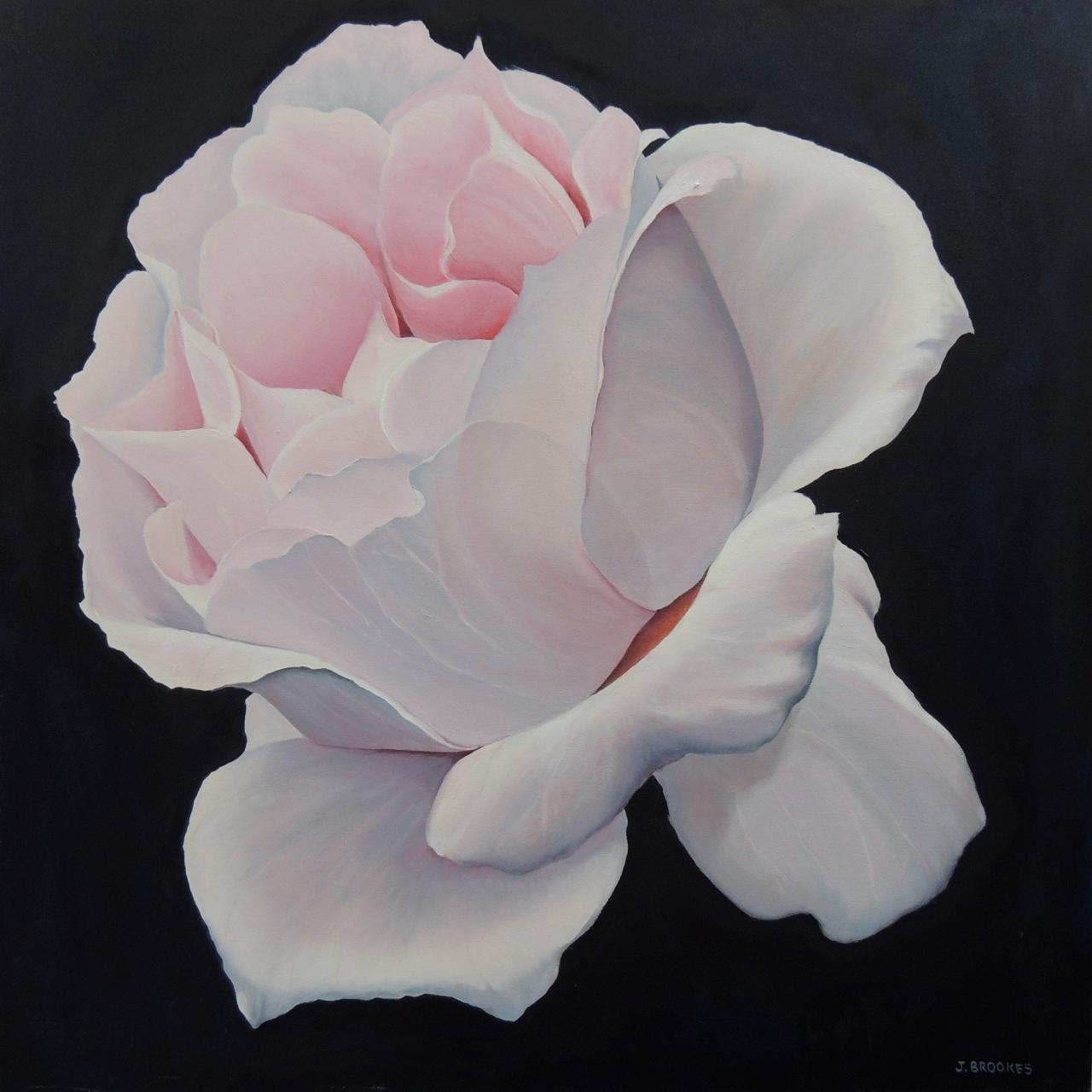 a-pale-rose-24x24