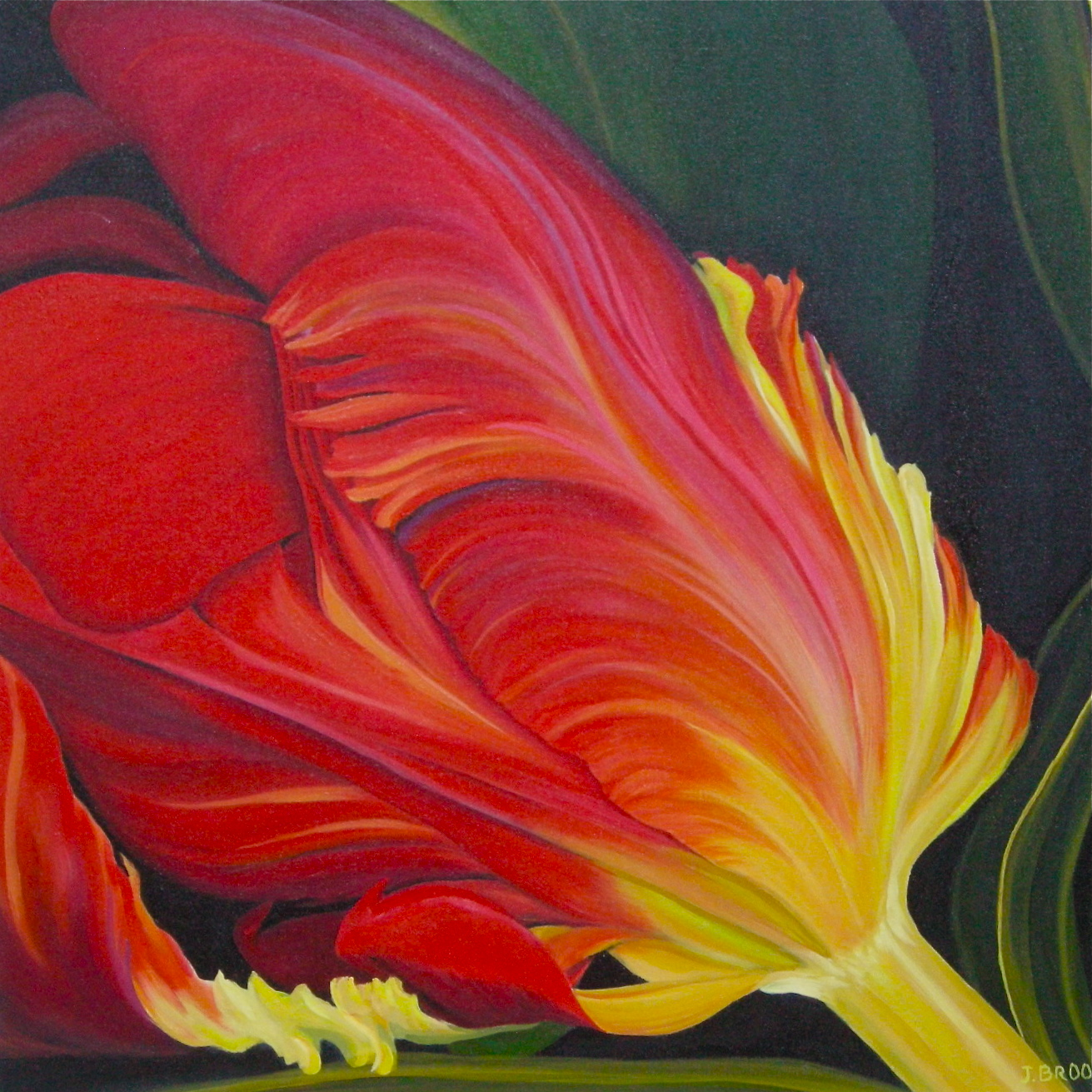 parrot-tulip-for-heart-and-stroke-foundation-24x24-2011