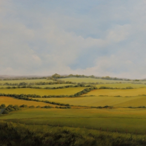 fields-in-e-sussex-36x36