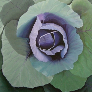 purple-cabbage-48x48-2010